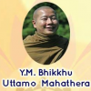 "YM. Bhikkhu Uttamo Mengupas Tuntas ""The Joy of Effort"""